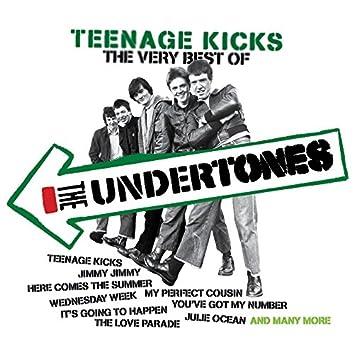 Teenage Kicks - The Very Best of The Undertones