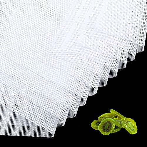 TOCYORIC Deshidratador de Silicona, 10 piezas Tapete de Silicona para Deshidratador de Alimentos, (38.5 * 28.5 cm)Reutilizable, Antiadherentes Hojas Para Secadores de Frutas, BPA - Free