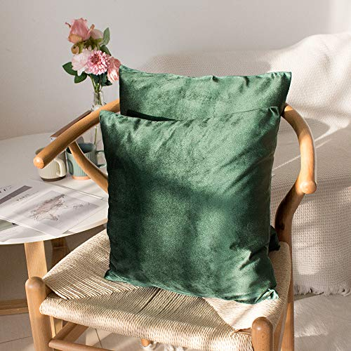 Sweet Forest Dutch Velvet Cushion Cover,2 Pack Decorative Square Throw Pillow Case (40x40 cm),Cushion Covers Pillowcase for Living room Sofa Couch Bedroom with Invisible Zipper(Emerald Green)