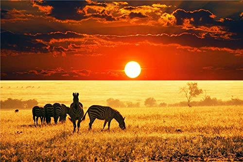 FAWFAW Classico Puzzle 1500 Pezzi, Zebre Fauna Selvatica nella Savana Africana, 1500/1000/500/300 Pezzi