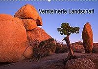 Versteinerte Landschaft (Wandkalender 2022 DIN A2 quer): Eine bunte Bilderreise durch den steinigen Suedwesten der USA (Monatskalender, 14 Seiten )