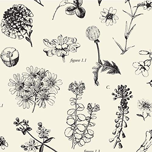 Boutique Printed Tissue Paper for Gift Wrapping with Elegant Botanical Illustrations, Decorative Tissue Paper - 24 Large Sheets, 20x30