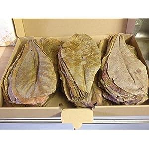 Seemandelbaumbltter-XL-100Stckca20cm-original-A-Markenware-von-Catappa-Leaves-BLITZVERSAND-Seemandellaub-Catappa-Leaves-Garnelen-Diskus-Bettas-Co