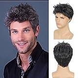 Pelucas negras para hombres Peluca de pelo sintético rizado de capas cortas grises mixtas para...