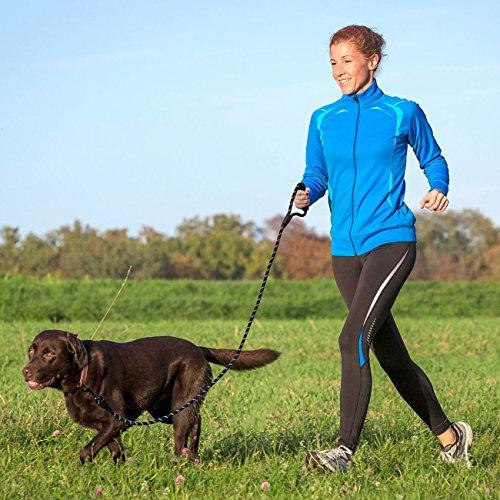 Anicoll 5 FT Starke Hundeleine mit Bequemen Gepolsterten Griff, Starke Reflexnähte der Trainingsleine für SicherheitNachts, eignet für Alle Größe Hunde - 2