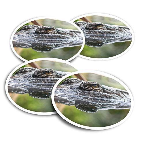 Vinyl Stickers (Set of 2) 10cm - Crocodile Alligator Reptile Croc Fun Decals for Laptops,Tablets,Luggage,Scrap Booking,Fridges #12341