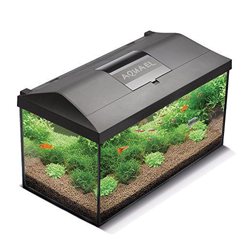 Aquael 5905546192163 Aquarium Set Leddy Led 40, 25 Liter Komplett Aquarium Mit Moderner Led Technik