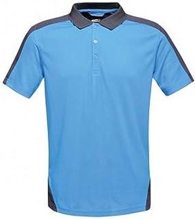 Amazon.es: De nuevo - XL / Polos / Camisetas, polos y camisas: Ropa