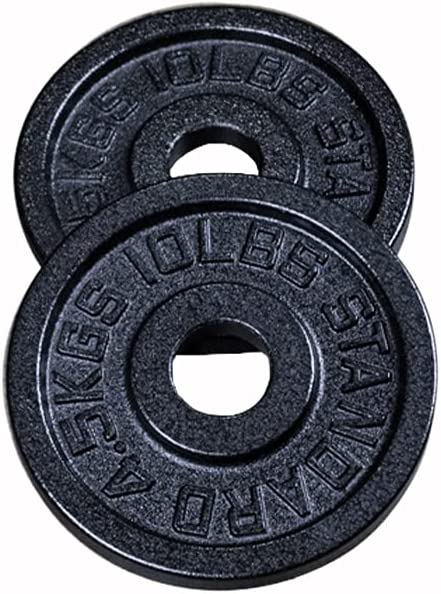 Cast Iron Weight Plate Pairs 25lbs 2.5lbs Inventory cleanup selling sale 10lbs 5lbs Max 84% OFF Select