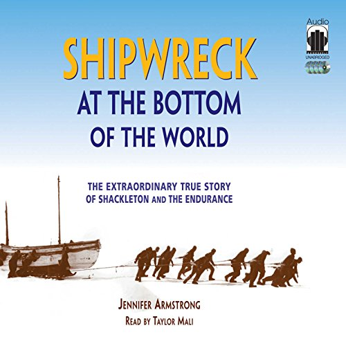Shipwreck at the Bottom of the World audiobook cover art