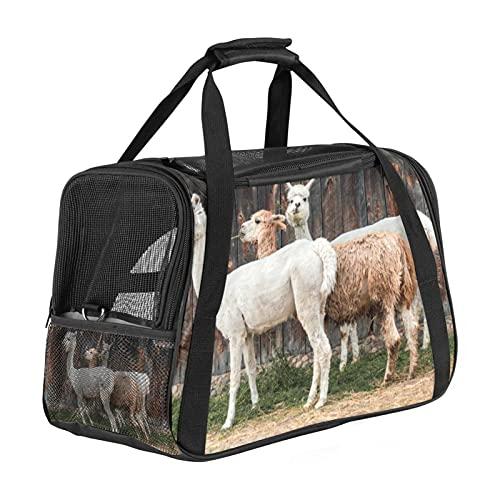 Bolsa de viaje portátil para mascotas, bolsas de lona aprobadas por aerolíneas para gato y conejo, con cara suave alpaca, alquileres vacacionales, impresión de piel de lana