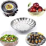 Multifonctionnel Folding Steamer Basket Foldable Fruit Steamer Casseroles en acier inoxydable Casseroles à légumes Panier pour la cuisine