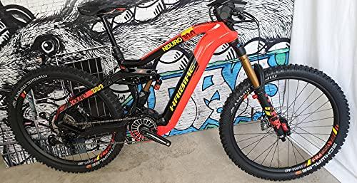HAIBIKE XDURO NDURO 10.0 Flyon Elektro Bike 2021 (S/42cm, Rot/Carbon/Gelb)