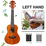 Immagine 1 aklot ukulele da concerto per