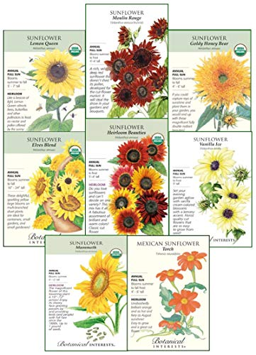 Botanical Interests 'Sunflower Delight' Flower Seed Collection - 8 Packets with Gift Box