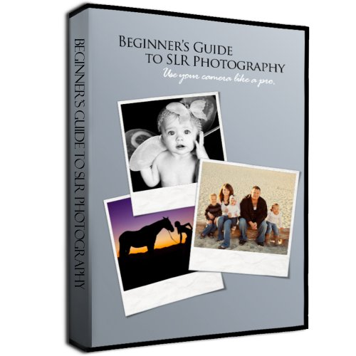 Beginner's Interactive Video Guide to Your DSLR Camera & Photography Training DVD (2013)