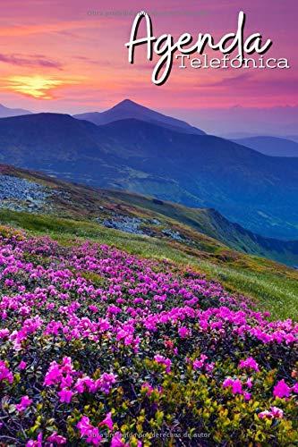 Agenda Telefónica Abecedario: Índice alfabético A-Z | Tamaño A5, agenda práctica | 728 entradas | Libreta de direcciones