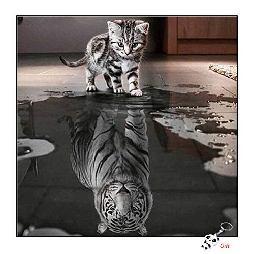 Rongyuk DIY 5D Diamond Painting Part Drill Full Kits, Cat and Tiger Crystal Rhinestone Embroidery Pictures Arts Craft Gift Included for Home Wall Decor(30 * 30 cm)