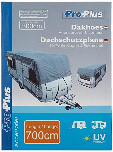 ProPlus 610276 Wohnwagen und Reisemobil Dachschutzplane