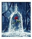 Dipingi per numero Kit, Dipinto ad olio Fai da te True Love Rose Disegno su tela con pennelli Decorazioni di Natale Decorazioni Regali - Frameless 16 * 20 pollici