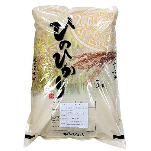 【精米】 熊本県産 白米 ヒノヒカリ 5kg 令和2年産 新米 特A 米 ひのひかり