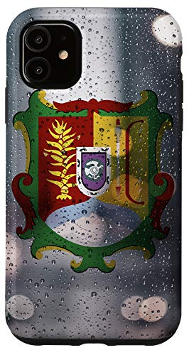 iPhone 11 Nayarit Raindrop Style Flag - Mexican State Pride Case