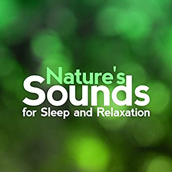 Nature's Sounds for Sleep and Relaxation