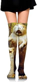 iuitt7rtree Calcetines de Falda de niña Uniformes Wild Beaver Calcetines de Tubo de Mujer Calcetines de compresión calceti...