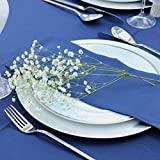Kadut Cloth Napkins - 17 x 17 Inch Solid Navy Blue Washable Polyester Dinner Napkins - Set of 12 Napkins with Hemmed Edges - Great for Weddings, Parties, Holiday Dinner & More