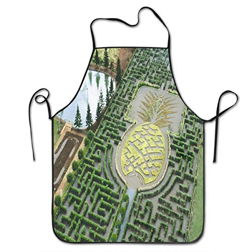 OMTANN Pine Apple Garden Maze Hawaii Creative Home Kitchen Apron for Women Men Unisex Apron Perfect for BBQ, Grill, Baking, Cooking