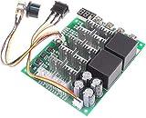 RUIZHI Controlador de velocidad del motor PWM 60A DC 10V-55V 12V 24V 36V 48V Pantalla digital 100A Max Brush Controlador del motor DC - Tercera marcha Parada hacia atrás inversa