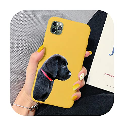 Coda the Dog Twin Doberman funda para teléfono Mi 10 CC9 9 Mi note10 Lite 9T Mi9T 8 Lite para Note 7 8 8T K30-HHSR-5466-Mi 10 Lite