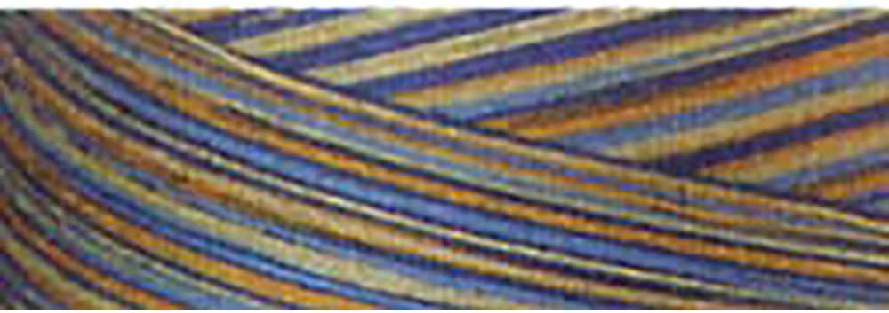 Signature Portland Mall 3 Ply Weekly update Cotton Quilting yd Variegated 3000 40wt Thread
