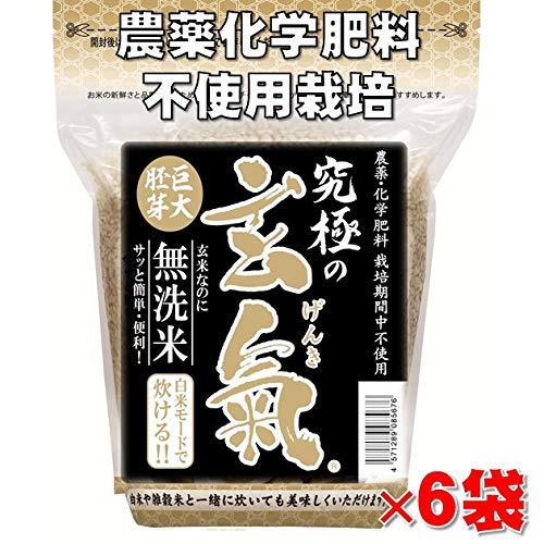 無農薬の巨大胚芽の発芽玄米 究極の玄氣 1.5�s(真空パック)×6袋