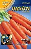 carota nantes in nastro