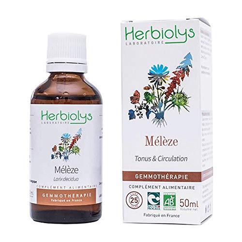 HERBIOLYS - Macérat de bourgeon de Mélèze Bio - 50 ml