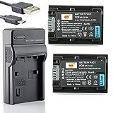 DSTE NP-FV100 Li-Ionen Batterie (2-Pack) & Micro USB Ladegerät Anzug kompatibel mit Sony DCR-SR15 SR21 SR68 SR88 SX15 SX21 SX44 SX45 SX63 SX65 SX83 SX85