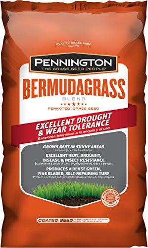 Pennington Bermuda Grass Seed - 5 lb