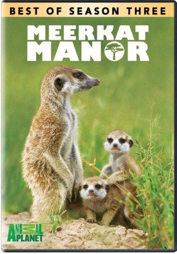 Meerkat Manor: Best of Season 3