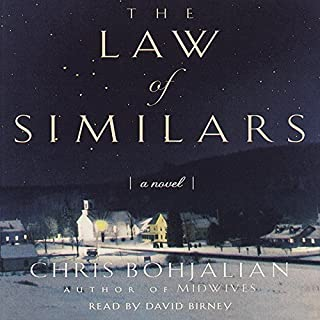 The Law of Similars: A Novel cover art