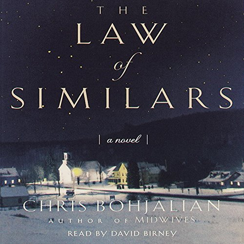 The Law of Similars: A Novel audiobook cover art
