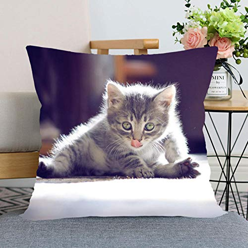 Cat Animal Pillow Case for Home Decorative Pillows Cover Invisible Zippered Throw Pillowcases 40X40CM 45X45CM-18_45X45cm One Sides