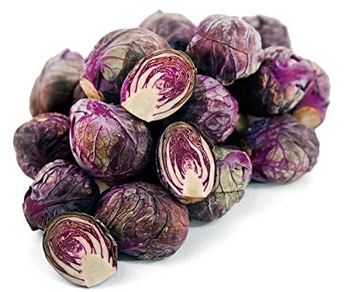 30+ ORGANICALLY GROWN Rubine Brussels Sprouts Purple Red Heirloom NON-GMO Rare, Delicious, Healthy, From USA