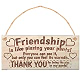 Friend Gift Wood Plaques Sign Ideas with Saying,Wood Gift Card-Room Décor,Friendship Is Like Pissing Your Pants!- Gift for Best Friends Female&Male Birthday Present