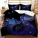 LIANHUAA Ropa de cama 3D doce constelaciones, funda nórdica con 1/2 fundas de almohada, adecuado para niños, niñas y jóvenes (Acuario, 220 x 260 cm)