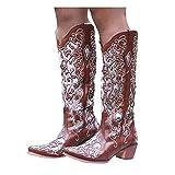 Dasongff Botas altas para mujer con tacón largo, botas de invierno para mujer, botas de vaquero, impermeables, botas de nieve bordadas, botas de equitación
