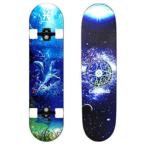 ZwöLf Sternbilder Dance Board Longboard Skateboard Mit VierräDrigem Roller FüR Erwachsene Kinder AnfäNger MäDchen Jungen,Pisces