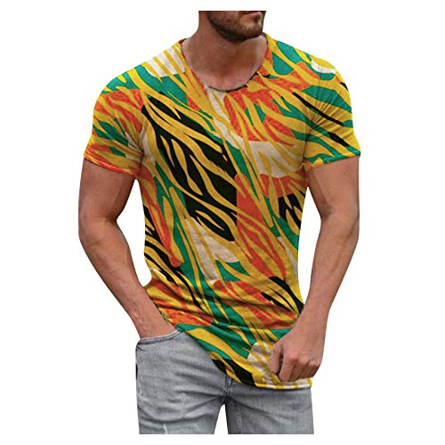Dwevkeful T-Shirt Herren Sommer Casual Kurzarm Roundhals Lustig Bedrucktes Tops Bluse Oberteile Sweatshirt