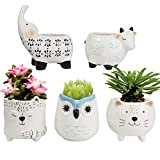 Succulent Planter Pots - Cute Ceramic Animal Set, Cat Cow Elephant Fox Owl, Home Decor Gifts