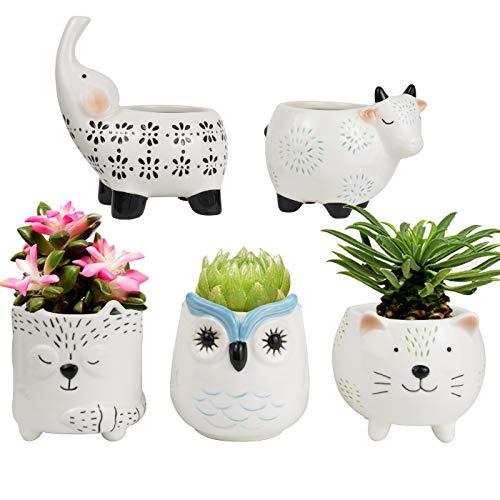 La Jolíe Muse Macetas de ceramica para suculentas, macetas animales - Maceta suculentas con agujeros de drenaje, Gato Vaca Elefante Zorro Búho, Regalos navidad, Set 5